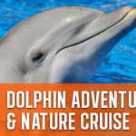 Dolphin adventure island cruise – journey cruises