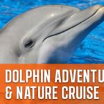 Dolphin adventure island cruise – journey cruises