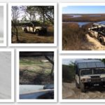 Outer banks wild spanish horse adventure tours
