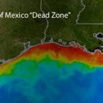 The gulf dead zone
