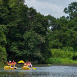 Wildlife expedition in panama and nicaragua ,