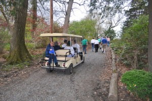 Guided tour by cart