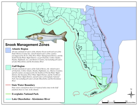 snook management zone map