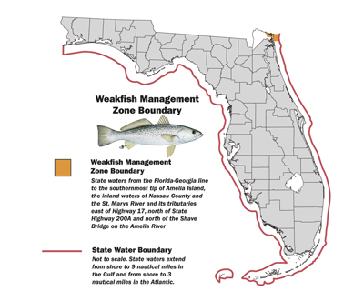 Weakfish management zone map