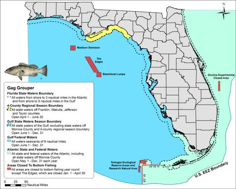 Gag grouper boundary map