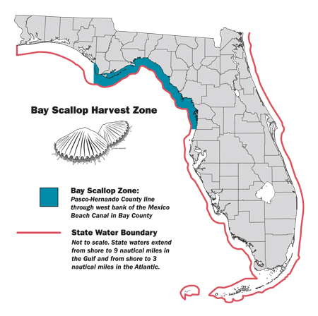 bay scallop harvest zone map