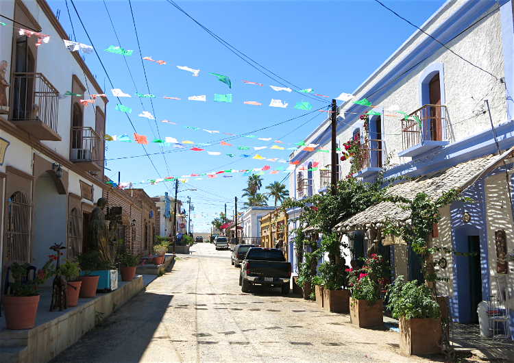 A festive street in pretty Todos Santos town. Image by Clifton Wilkinson / Lonely Planet