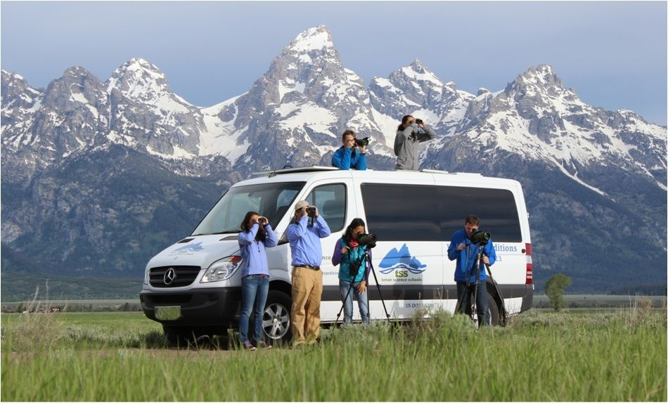 Wildlife expeditions of teton science schools - jackson hole wy central reservations at the hotel or condo