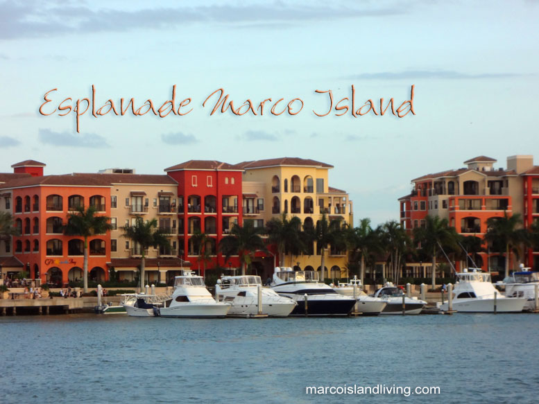 Marco island florida, property, attractions, fishing, hotels and restaurants and White-colored