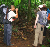 Belize Eco Tours