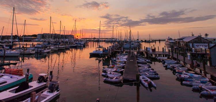 The best places to watch the sunset in key west by turtle kraals Enjoy complimentary beer, margaritas and