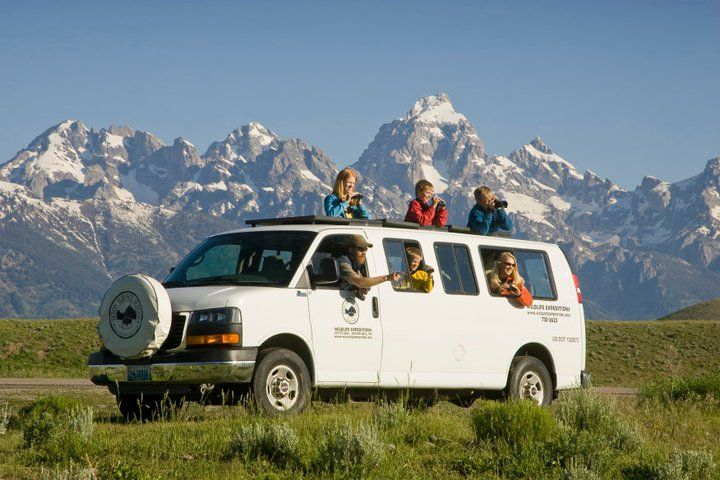 My wildlife expedition in jackson hole - jackson hole traveler an ordinary, attempting